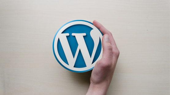 Aktualizacje WordPress